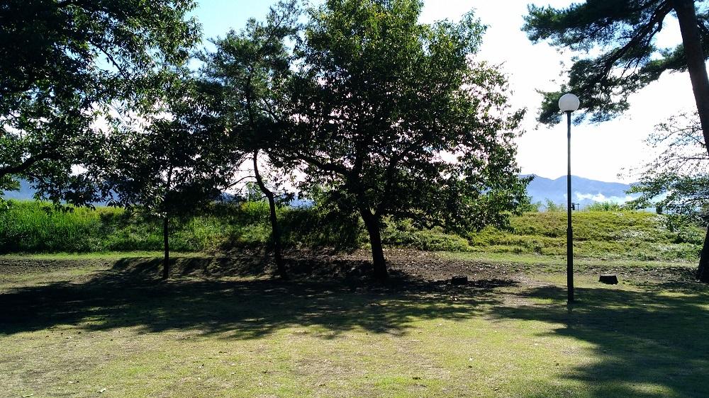 東屋近くの芝生広場