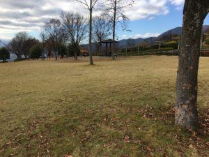 フルーツ公園芝生シーン